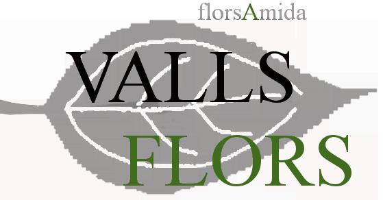 Vallsflors-Diseño floral online Molins de Rei